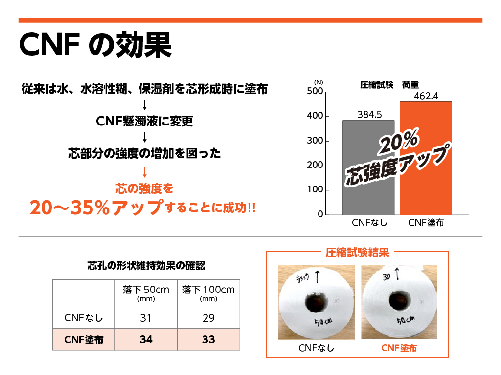 CNF-pp3